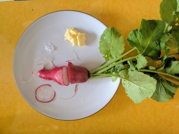 Scarlet Radish with butter and salt-- delicious!